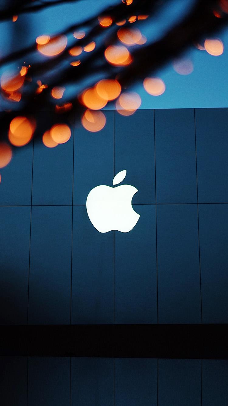 iPhonepapers.com-Apple-iPhone-wallpaper-ng08-apple-logo-blue-orange-dark