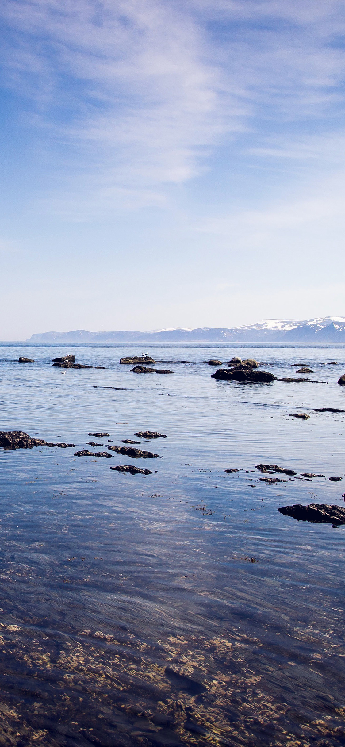 iPhonexpapers.com-Apple-iPhone-wallpaper-ng25-sea-rock-ocean-beach-nature-summer-sky-blue