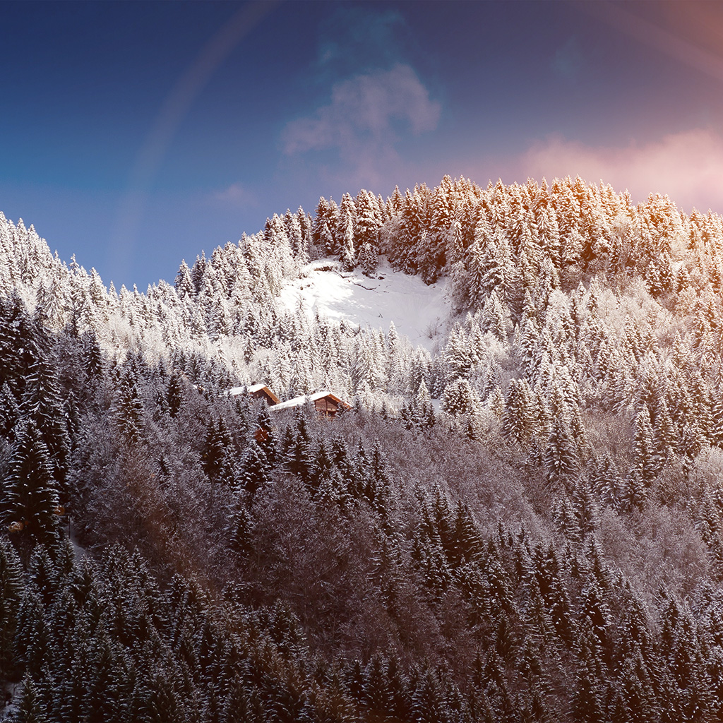 android-wallpaper-ng50-snow-mountain-wood-home-winter-nature-flare-wallpaper