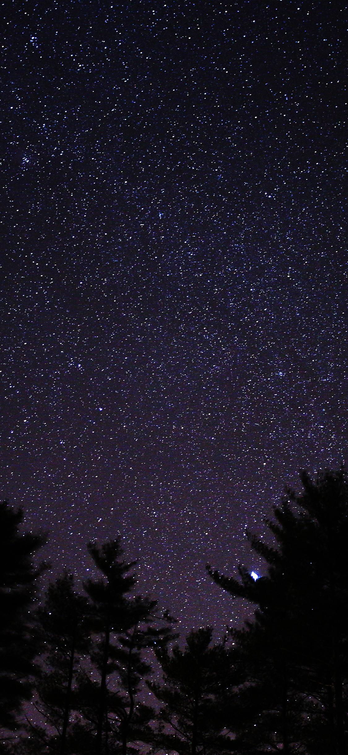 Ng56 Night Sky Star Space Starry Wood Dark Blue
