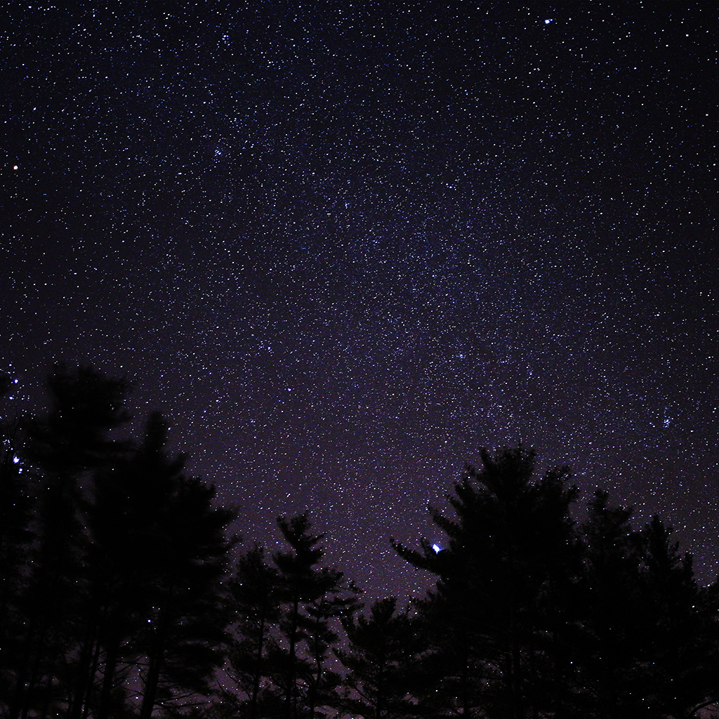 wallpaper-ng56-night-sky-star-space-starry-wood-dark-blue-wallpaper