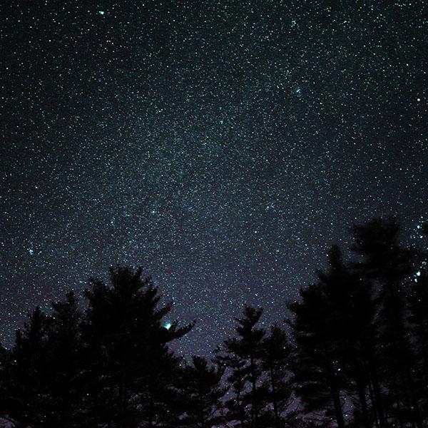 iPapers.co-Apple-iPhone-iPad-Macbook-iMac-wallpaper-ng57-night-sky-star-space-starry-wood-dark-romantic-wallpaper