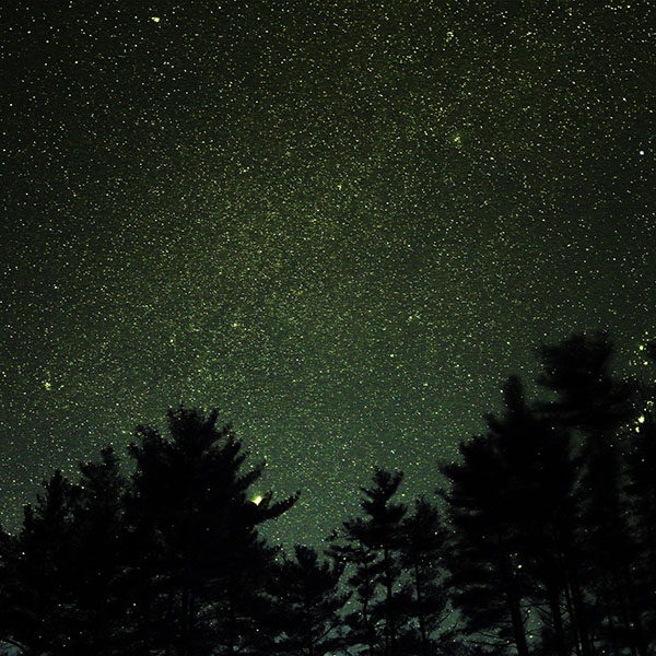 iPapers.co-Apple-iPhone-iPad-Macbook-iMac-wallpaper-ng58-night-sky-star-space-starry-wood-dark-green-romantic-wallpaper