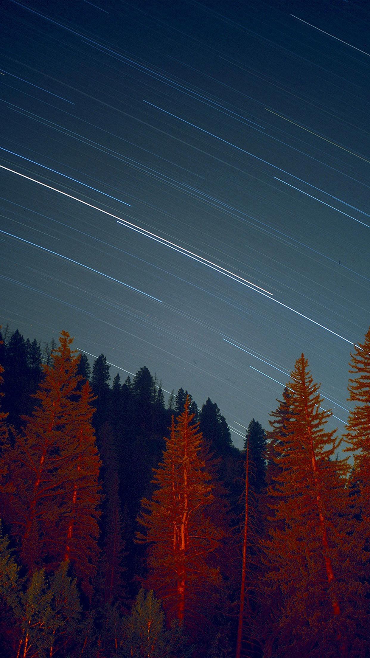 Ng80 Night Wood Mountain Star Sky Nature Wallpaper