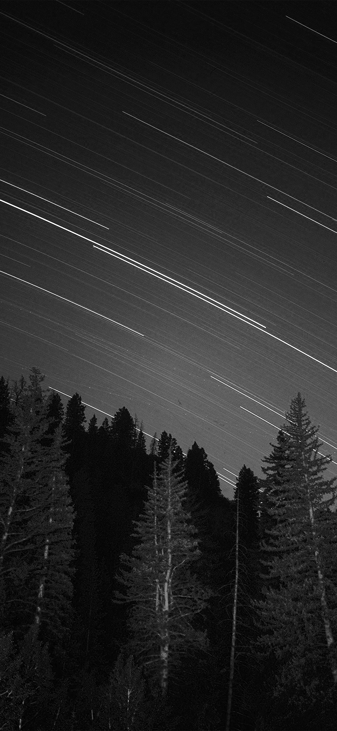 iPhonexpapers.com-Apple-iPhone-wallpaper-ng82-night-wood-mountain-star-sky-nature-bw-dark