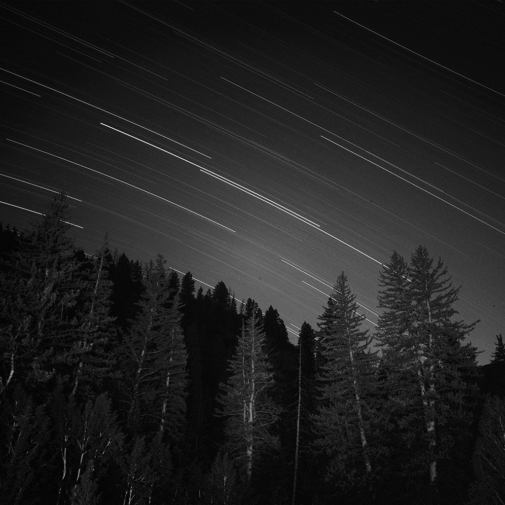 wallpaper-ng82-night-wood-mountain-star-sky-nature-bw-dark-wallpaper