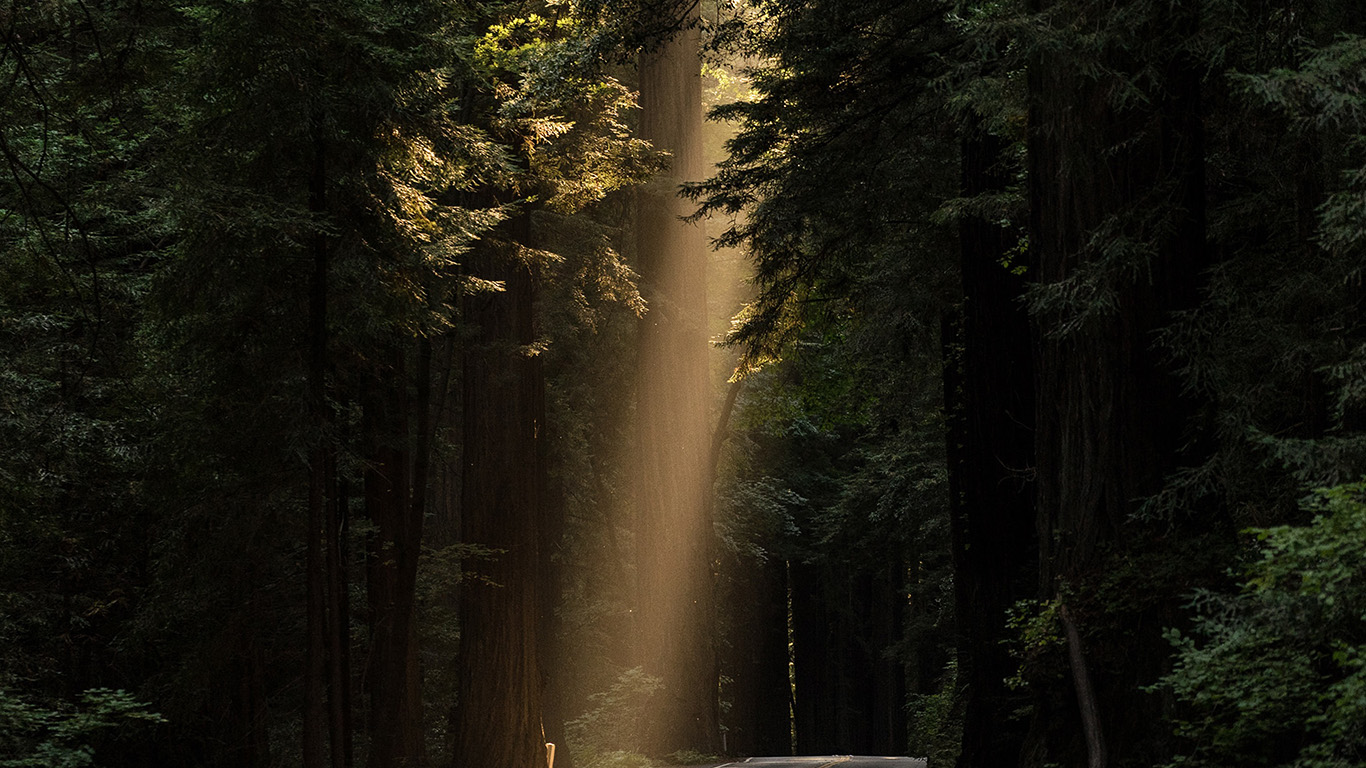 desktop-wallpaper-laptop-mac-macbook-air-nh15-light-road-wood-forest-way-nature-wallpaper