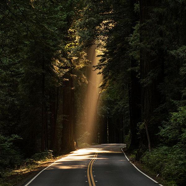 iPapers.co-Apple-iPhone-iPad-Macbook-iMac-wallpaper-nh17-light-road-wood-forest-way-nature-green-wallpaper