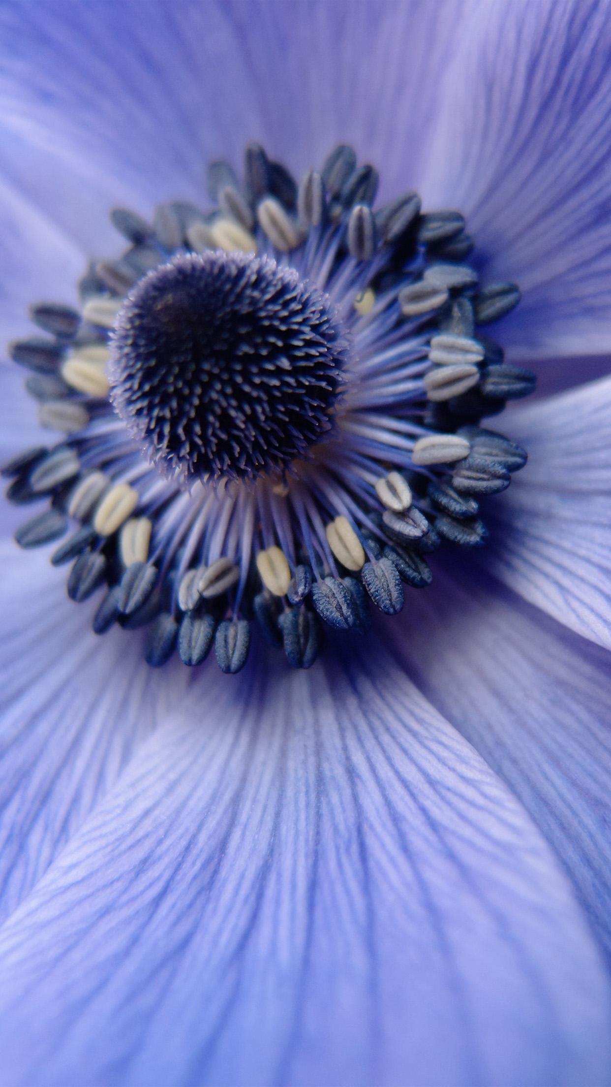 Iphonepapers Com Iphone 8 Wallpaper Ni01 Flower Purple Zoom