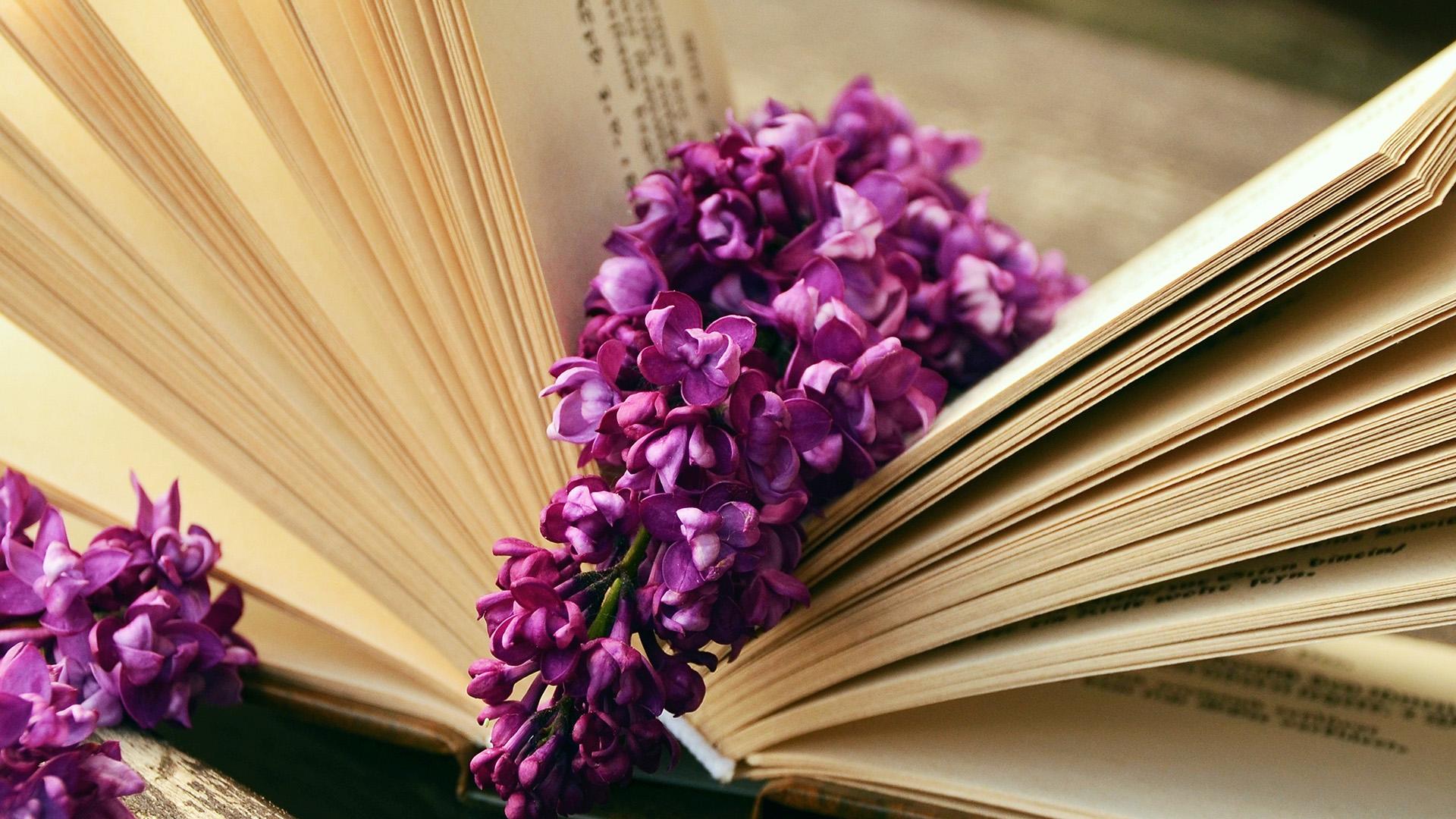 ni22-book-read-time-flower-wallpaper