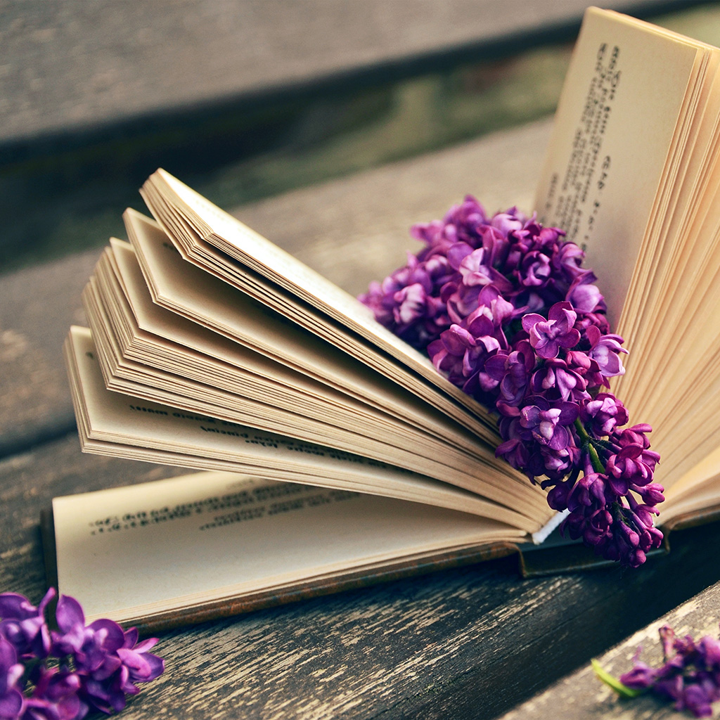 android-wallpaper-ni24-book-read-time-flower-flare-purple-wallpaper