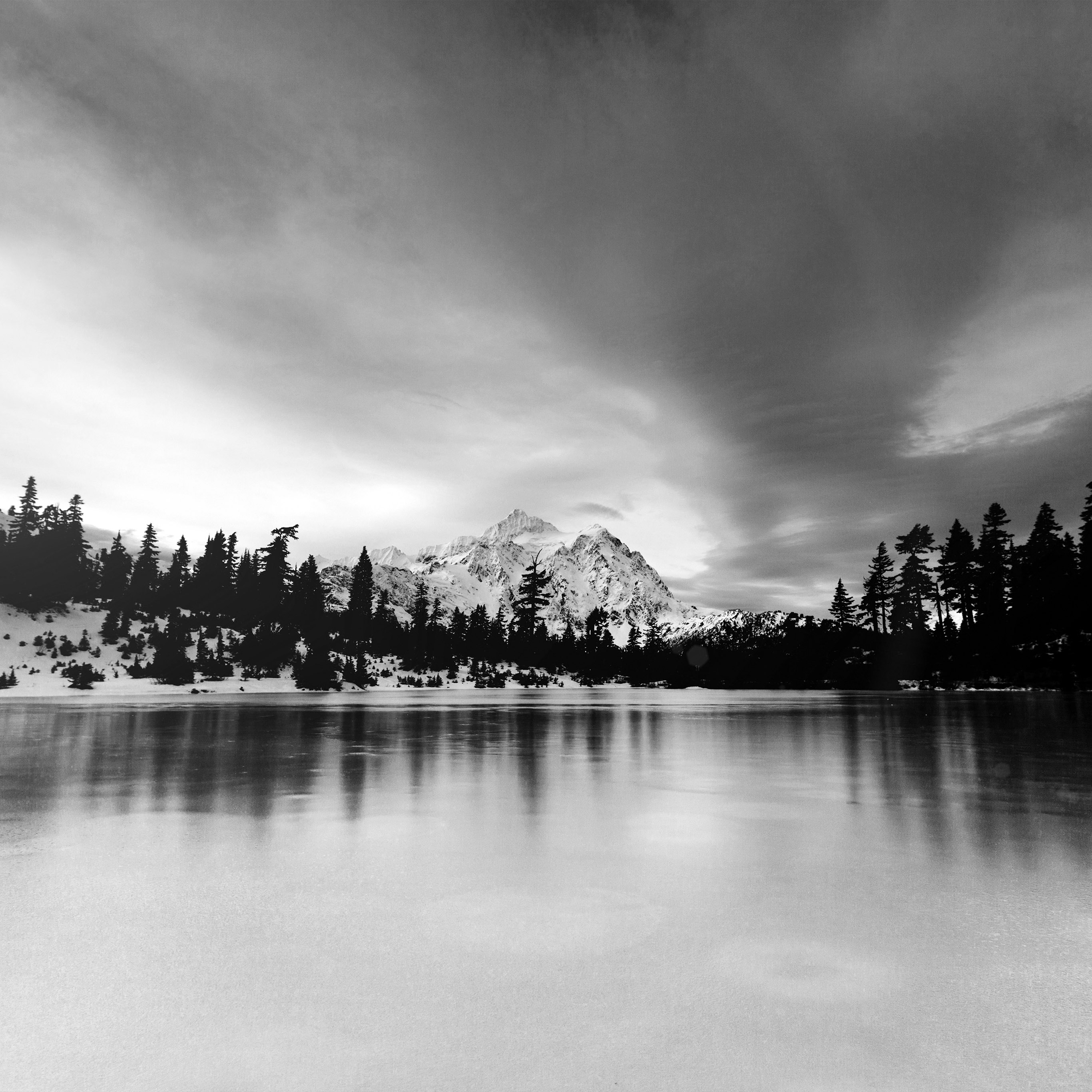 Ni39-frozen-lake-winter-snow-wood-forest-cold-bw-dark