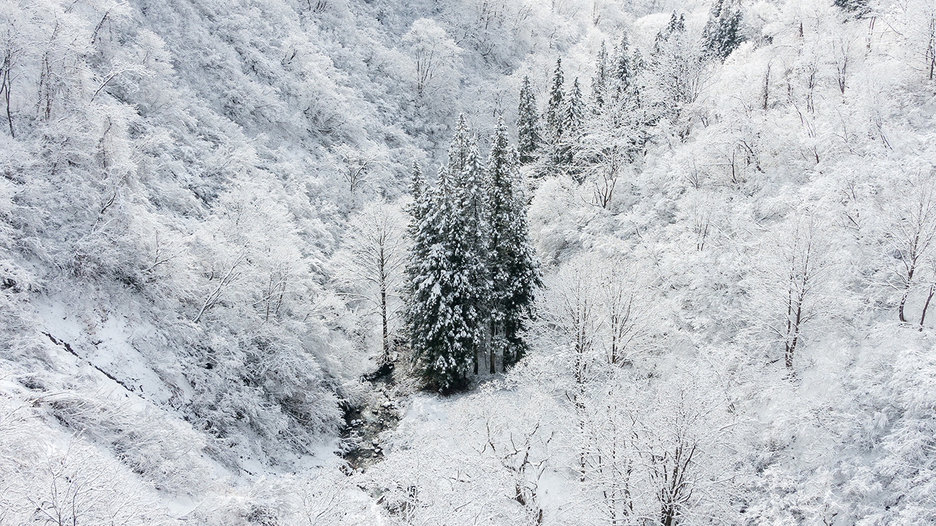 desktop-wallpaper-laptop-mac-macbook-air-ni66-winter-white-snow-wood-forest-mountain-wallpaper