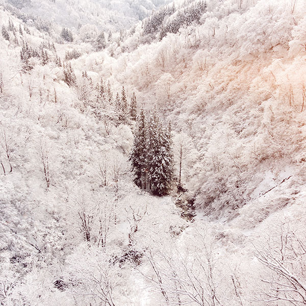 iPapers.co-Apple-iPhone-iPad-Macbook-iMac-wallpaper-ni67-winter-white-snow-wood-forest-mountain-flare-wallpaper