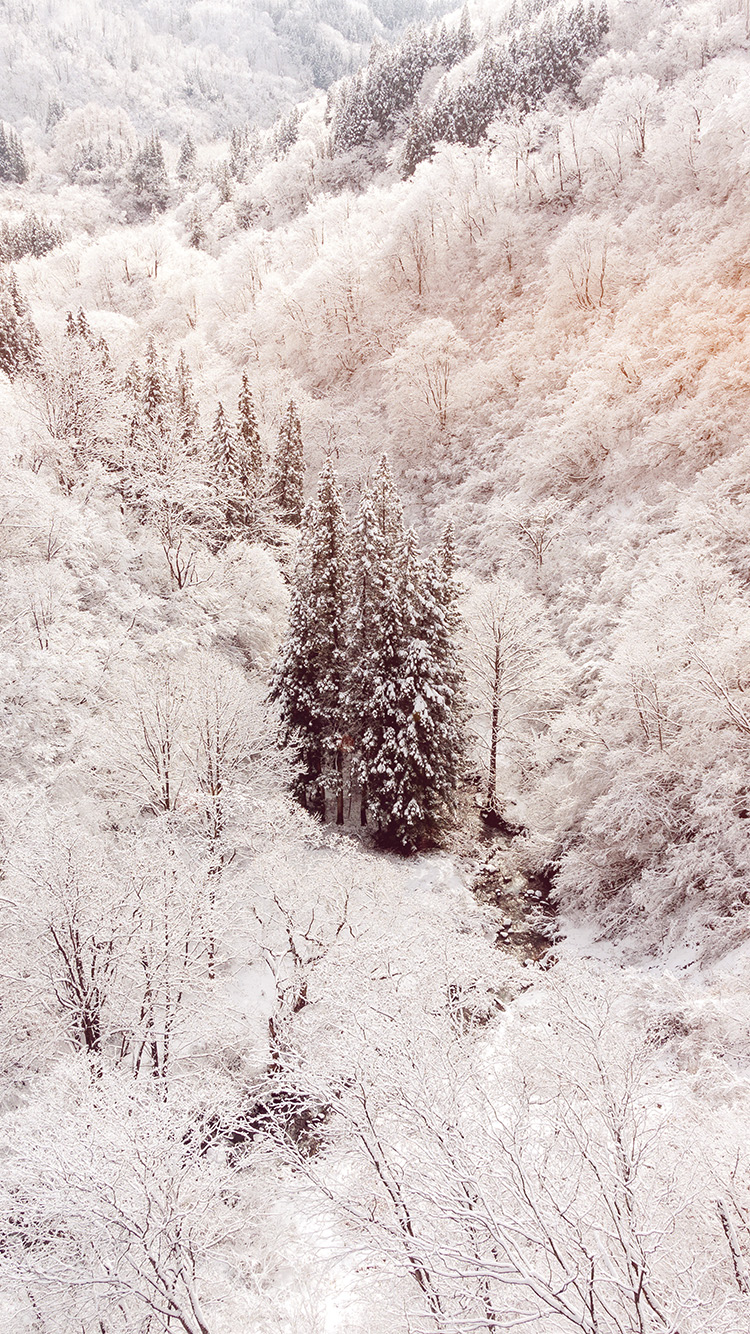 iPhone7papers.com-Apple-iPhone7-iphone7plus-wallpaper-ni67-winter-white-snow-wood-forest-mountain-flare