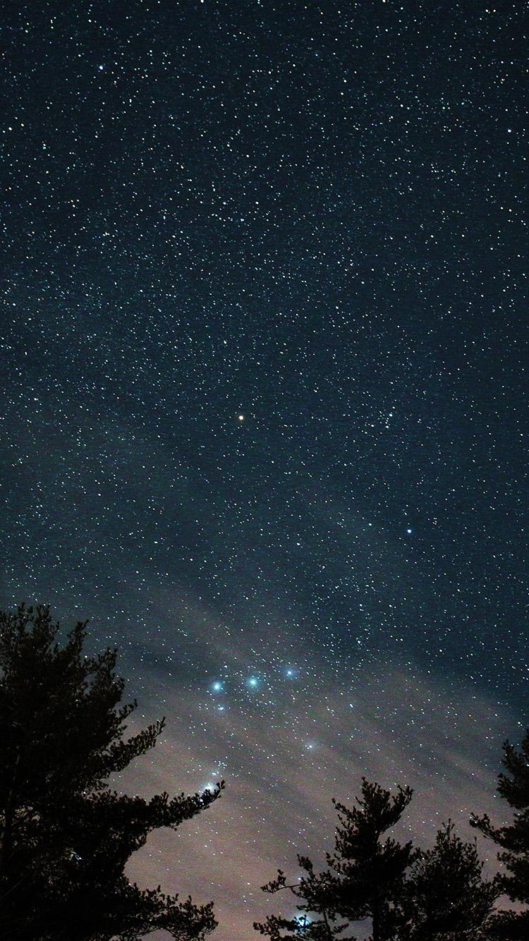 iPhonepapers.com-Apple-iPhone-wallpaper-ni85-night-sky-star-wood-space-starry-blue-dark