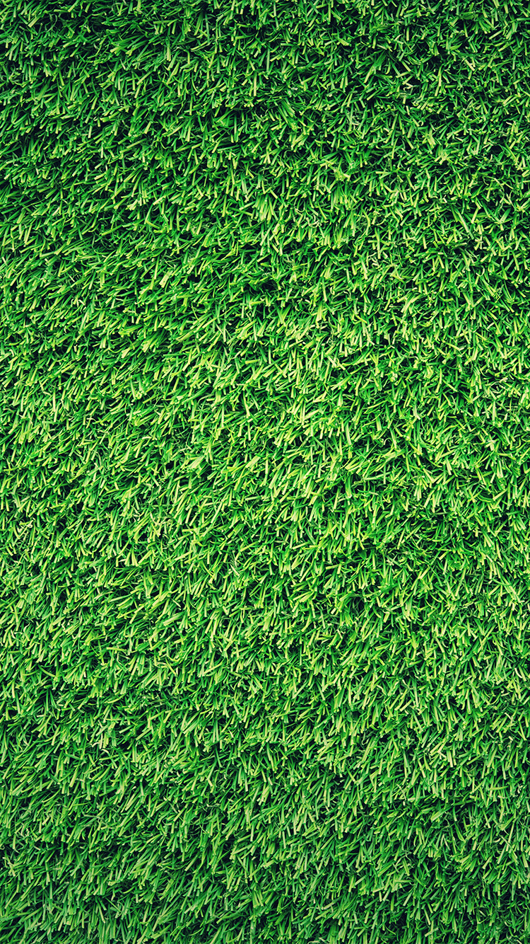iPhone6papers.co-Apple-iPhone-6-iphone6-plus-wallpaper-nj44-grass-green-pattern-nature