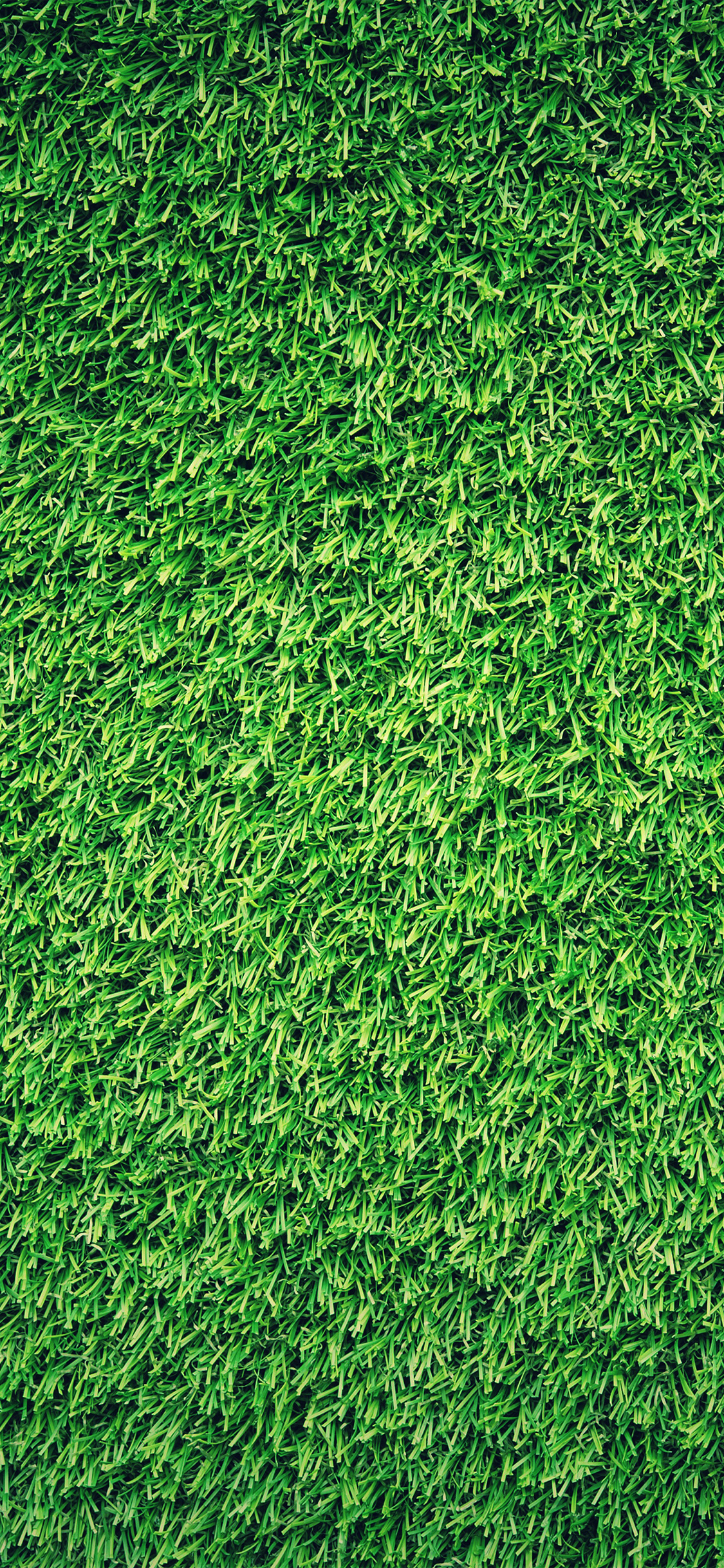 Iphonexpapers Com Iphone X Wallpaper Nj44 Grass Green