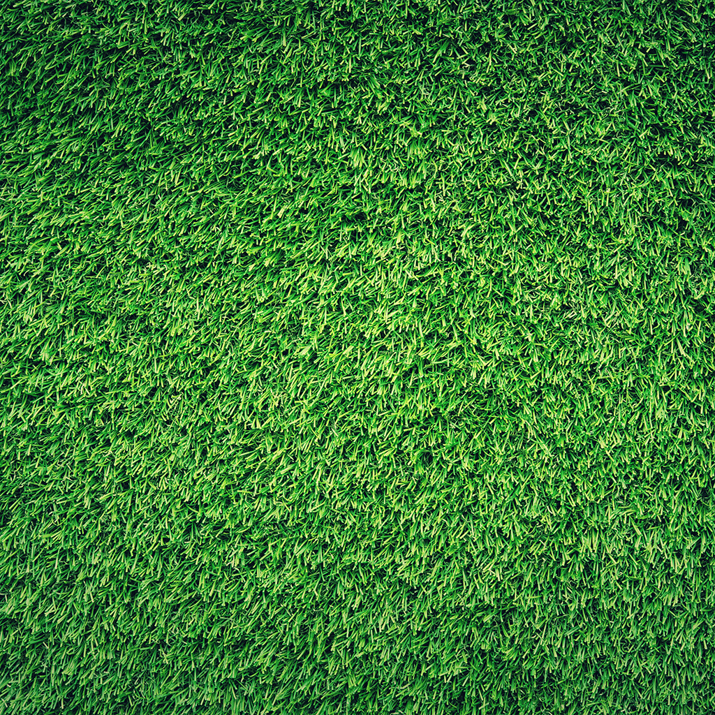 android-wallpaper-nj44-grass-green-pattern-nature-wallpaper