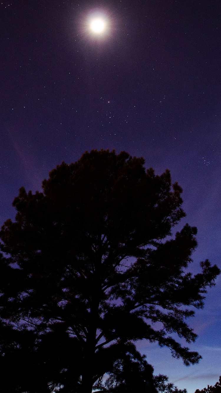 iPhone6papers.co-Apple-iPhone-6-iphone6-plus-wallpaper-nj67-one-star-shine-night-dark-blue-sky-wood