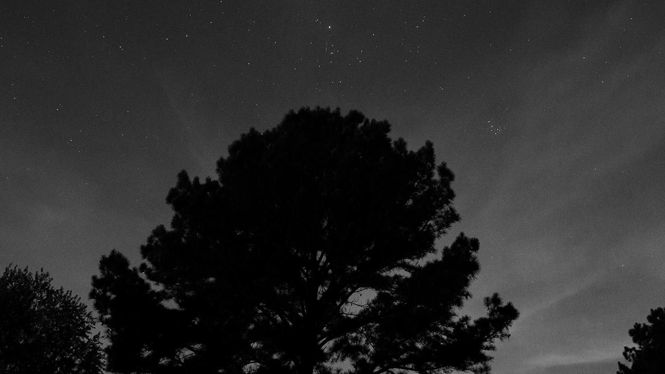 desktop-wallpaper-laptop-mac-macbook-air-nj69-one-star-shine-night-dark-sky-wood-bw-wallpaper