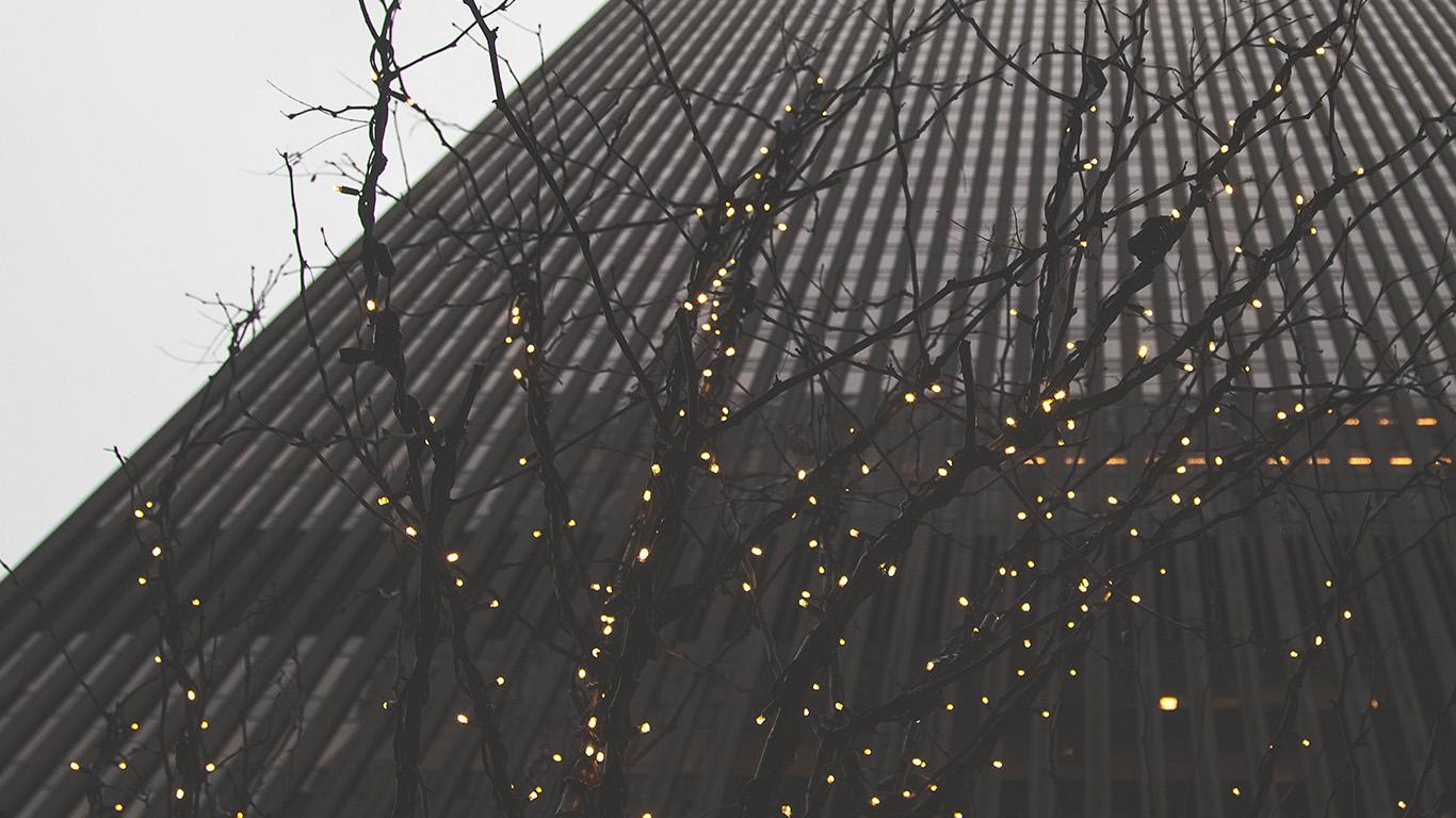 desktop-wallpaper-laptop-mac-macbook-air-nj70-lonely-winter-tree-light-city-wallpaper