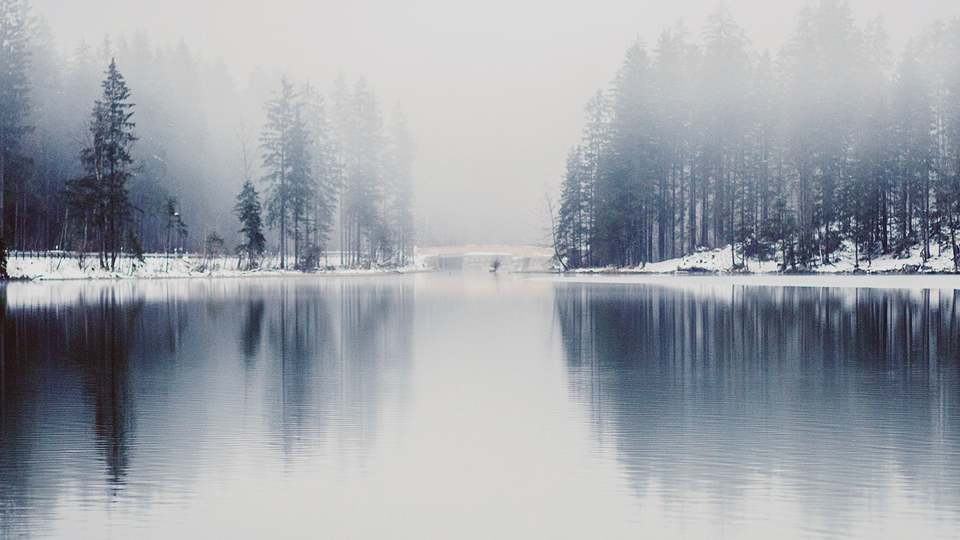 in the lake of the woods term paper View essay - in the lake of the woods essay from soc 002 at saint marys college of california 1 in the lake of the woods in the novel in the lake of the woods, the.