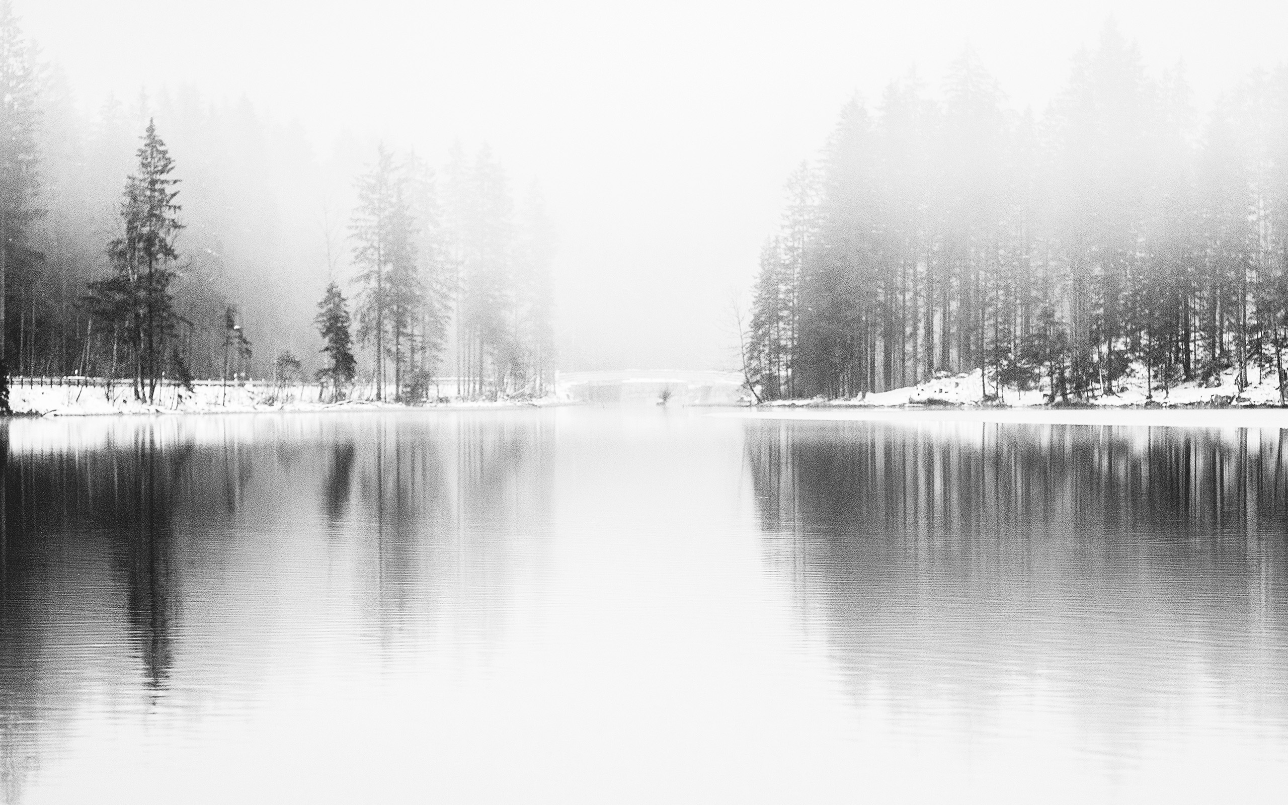 Nk08 Winter Lake White Bw Wood Nature Fog Wallpaper