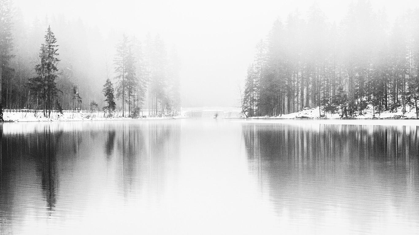 desktop-wallpaper-laptop-mac-macbook-air-nk08-winter-lake-white-bw-wood-nature-fog-wallpaper