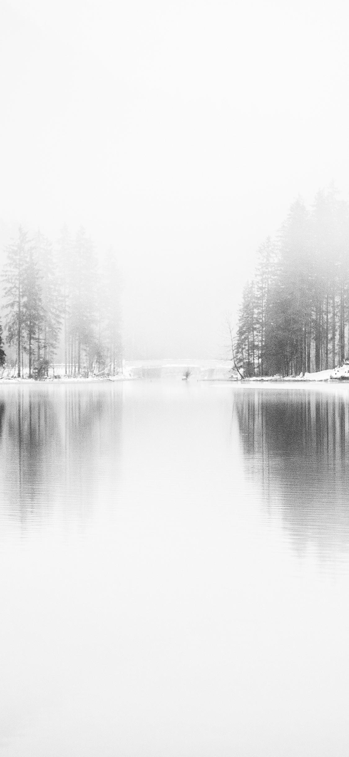 iPhoneXpapers.com-Apple-iPhone-wallpaper-nk08-winter-lake-white-bw-wood-nature-fog