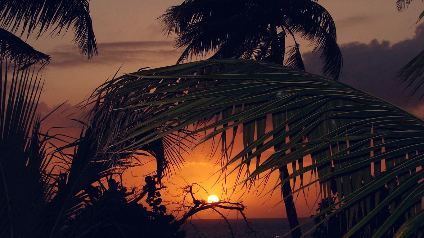 desktop-wallpaper-laptop-mac-macbook-air-nk20-beach-sunset-sea-tree-nature-holiday-wallpaper