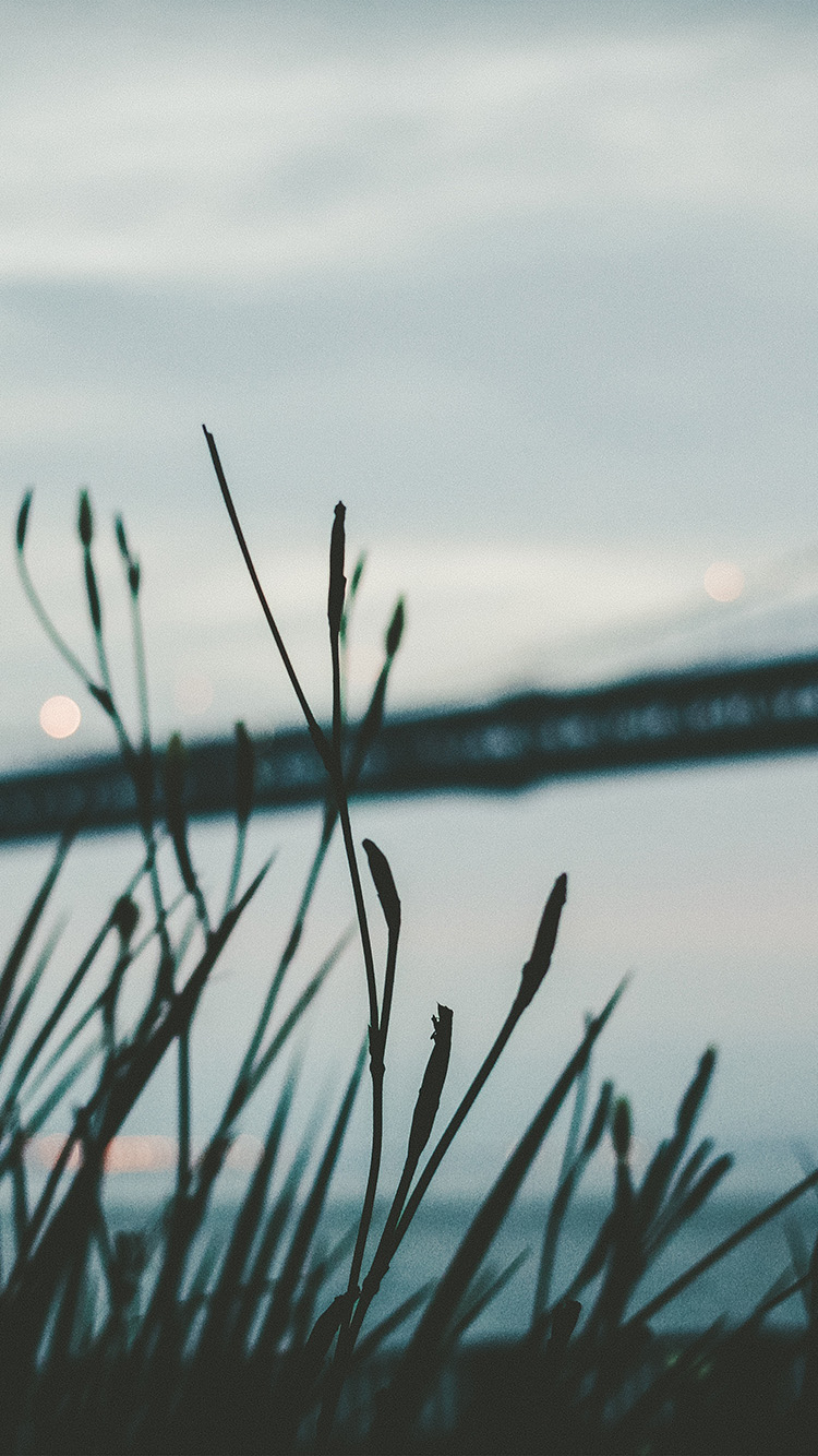 iPhone6papers.co-Apple-iPhone-6-iphone6-plus-wallpaper-nl00-bridge-morning-river-bokeh