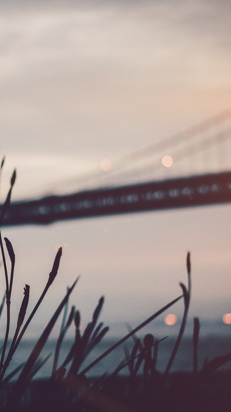 iPhonepapers.com-Apple-iPhone-wallpaper-nl02-bridge-morning-river-bokeh-flare