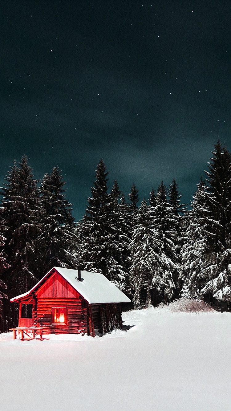 iPhone7papers.com-Apple-iPhone7-iphone7plus-wallpaper-nl38-winter-house-night-sky-christmas-starry