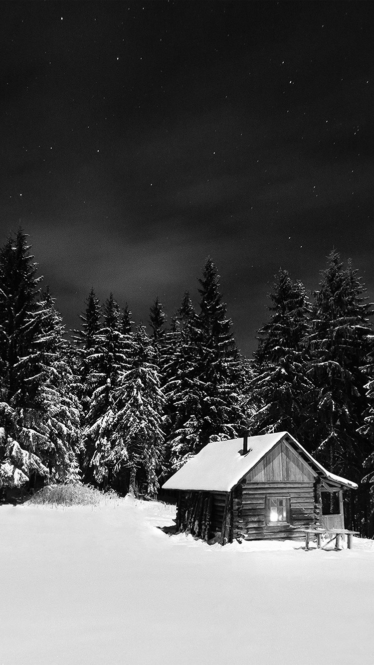 iPhone7papers.com-Apple-iPhone7-iphone7plus-wallpaper-nl39-winter-house-night-sky-christmas-starry-bw-dark