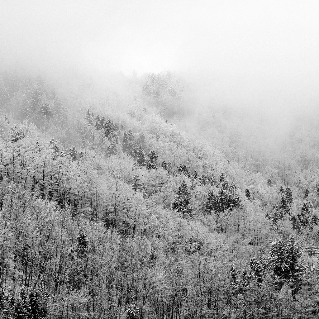 android-wallpaper-nl42-mountain-wood-winter-christmas-bw-dark-wallpaper