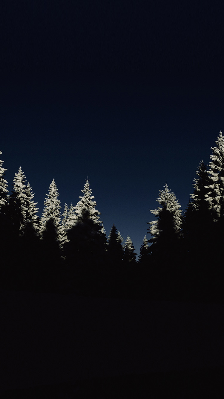 iPhone6papers.co-Apple-iPhone-6-iphone6-plus-wallpaper-nl43-wood-winter-night-mountain-minimal