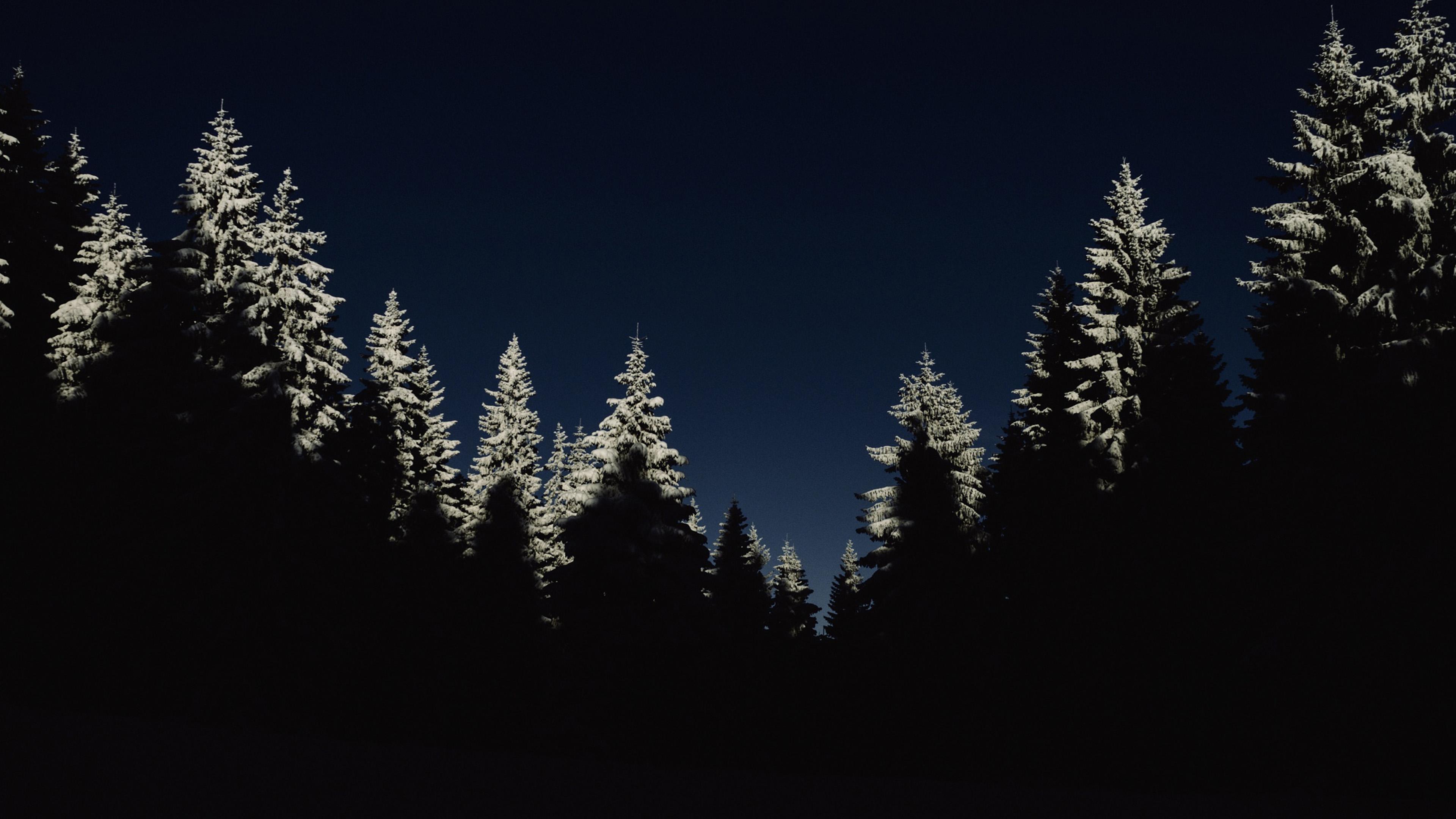 Nl43 Wood Winter Night Mountain Minimal Wallpaper