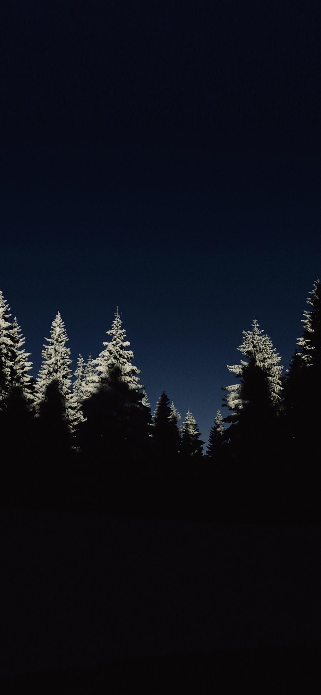 iPhoneXpapers.com-Apple-iPhone-wallpaper-nl43-wood-winter-night-mountain-minimal
