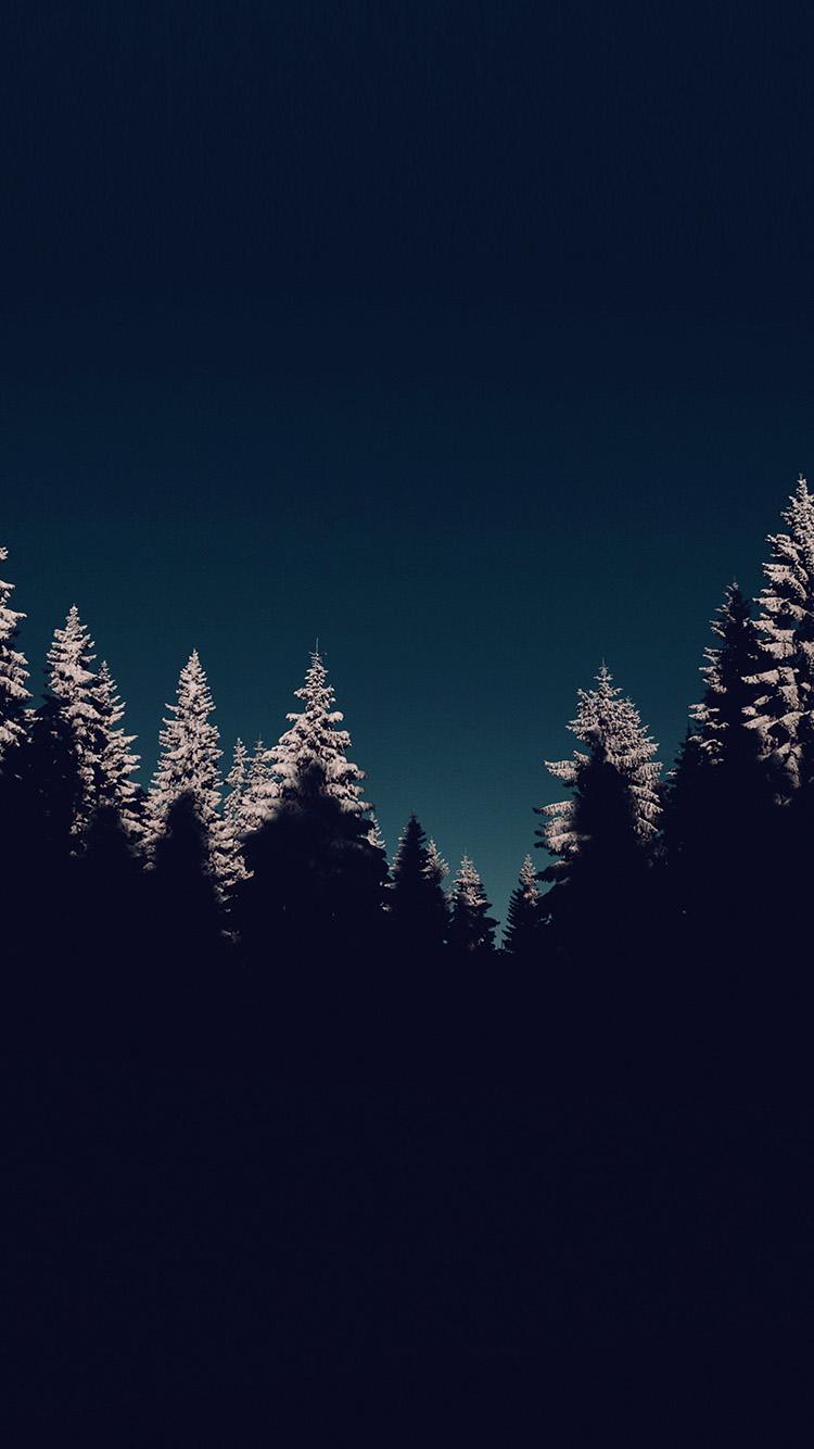iPhone7papers.com-Apple-iPhone7-iphone7plus-wallpaper-nl44-wood-winter-night-mountain-blue-dark