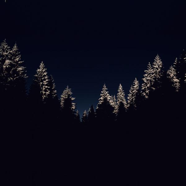 iPapers.co-Apple-iPhone-iPad-Macbook-iMac-wallpaper-nl45-wood-winter-night-mountain-dark-wallpaper