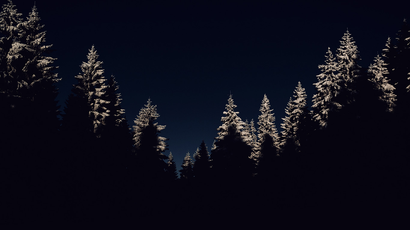 Nl45 Wood Winter Night Mountain Dark Wallpaper