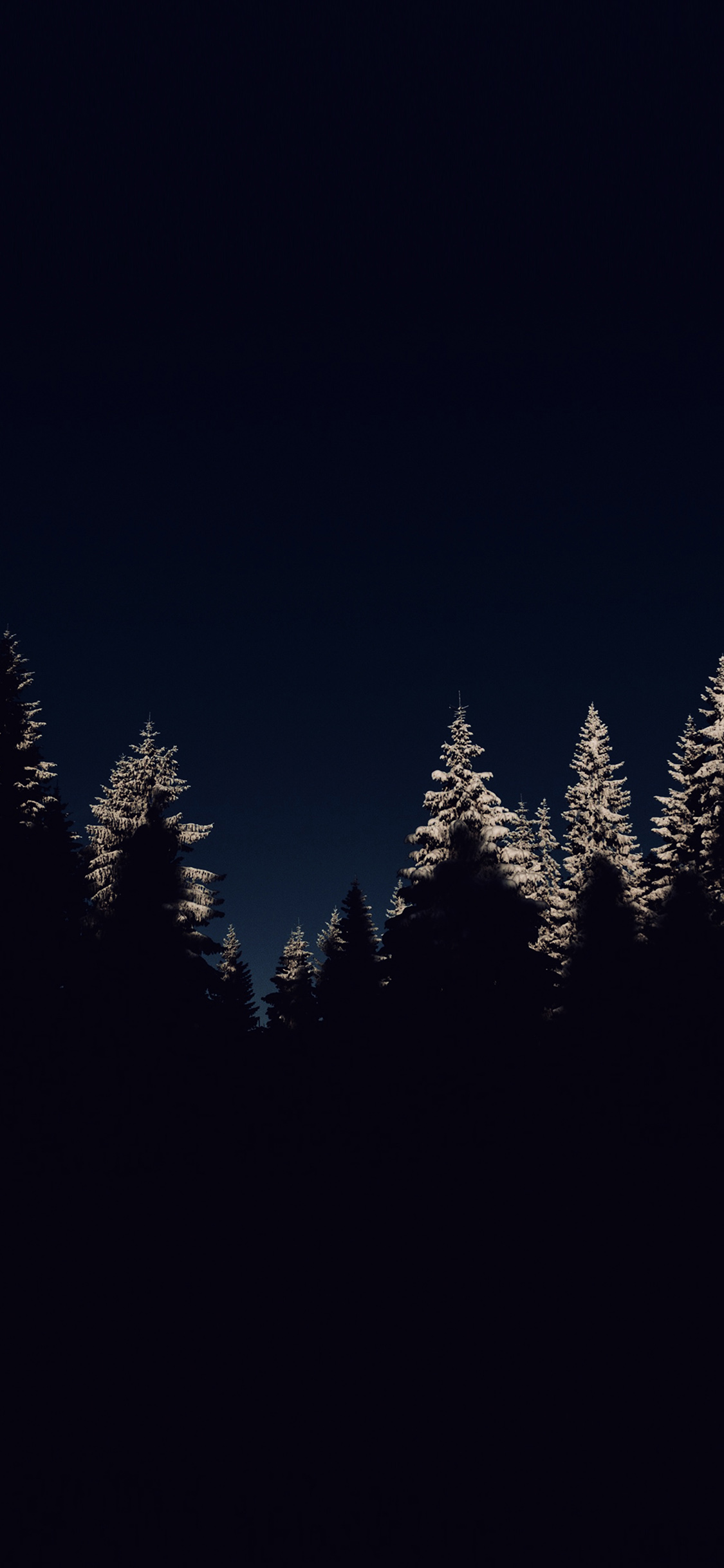 Iphonexpapers Com Iphone X Wallpaper Nl45 Wood Winter Night