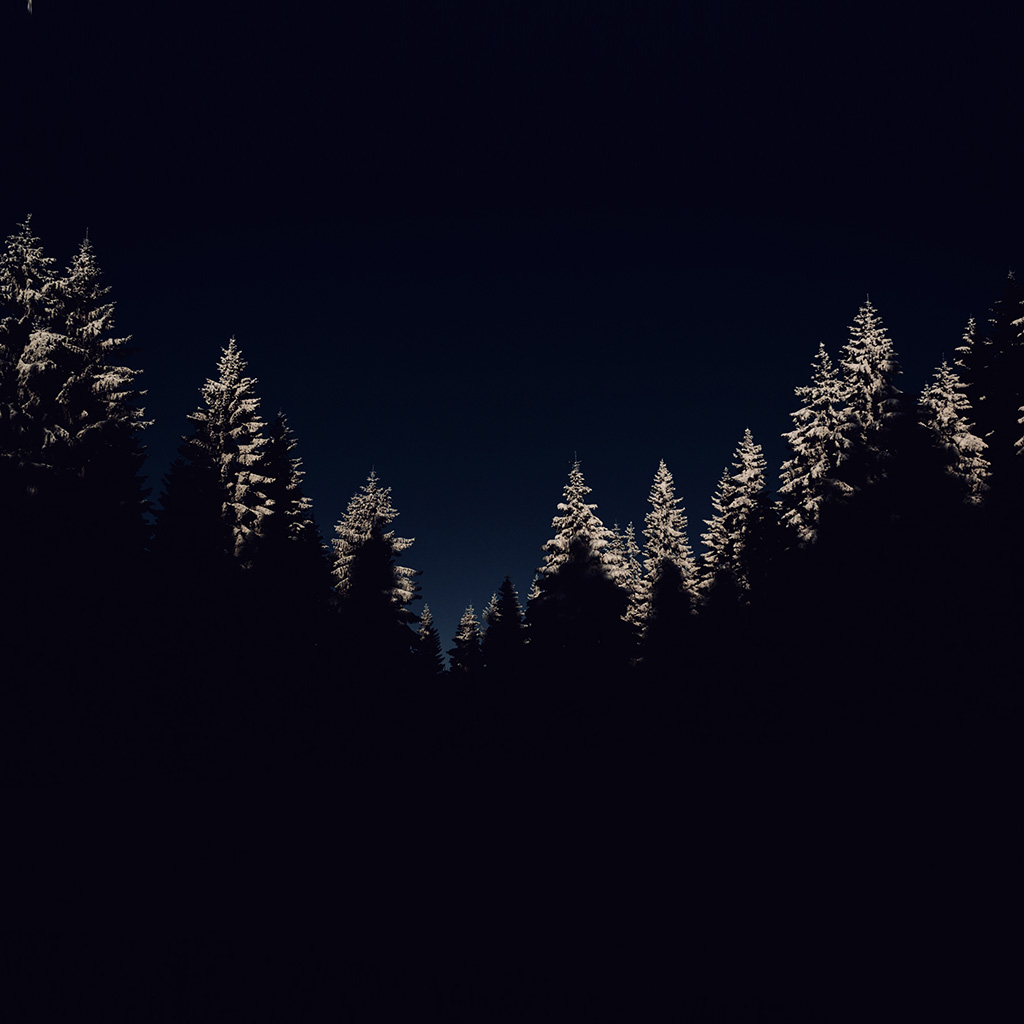 wallpaper-nl45-wood-winter-night-mountain-dark-wallpaper