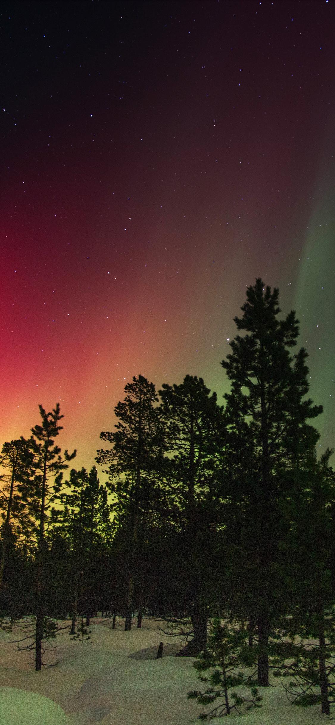 iPhoneXpapers.com-Apple-iPhone-wallpaper-nl46-snow-sky-aurora-night-winter-christmas