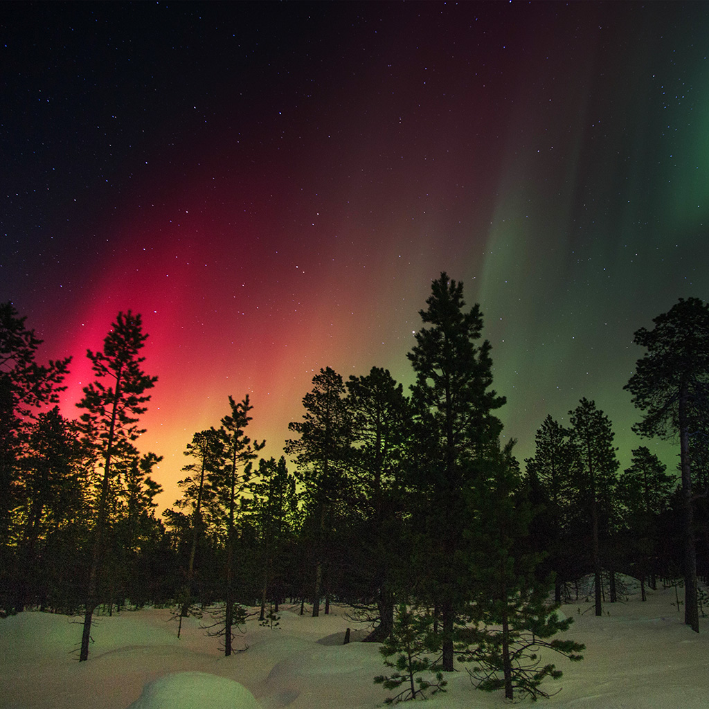 wallpaper-nl46-snow-sky-aurora-night-winter-christmas-wallpaper