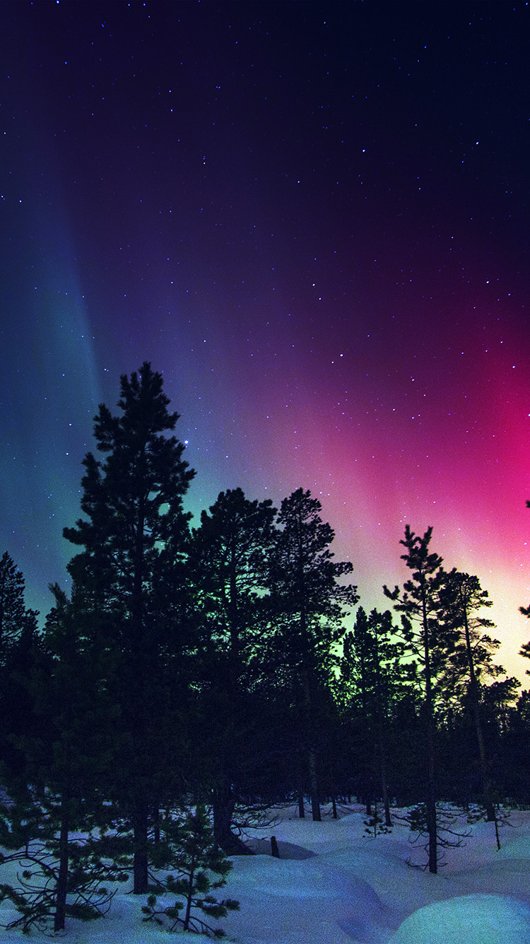 iPhone7papers.com-Apple-iPhone7-iphone7plus-wallpaper-nl47-snow-sky-aurora-night-winter-christmas-blue