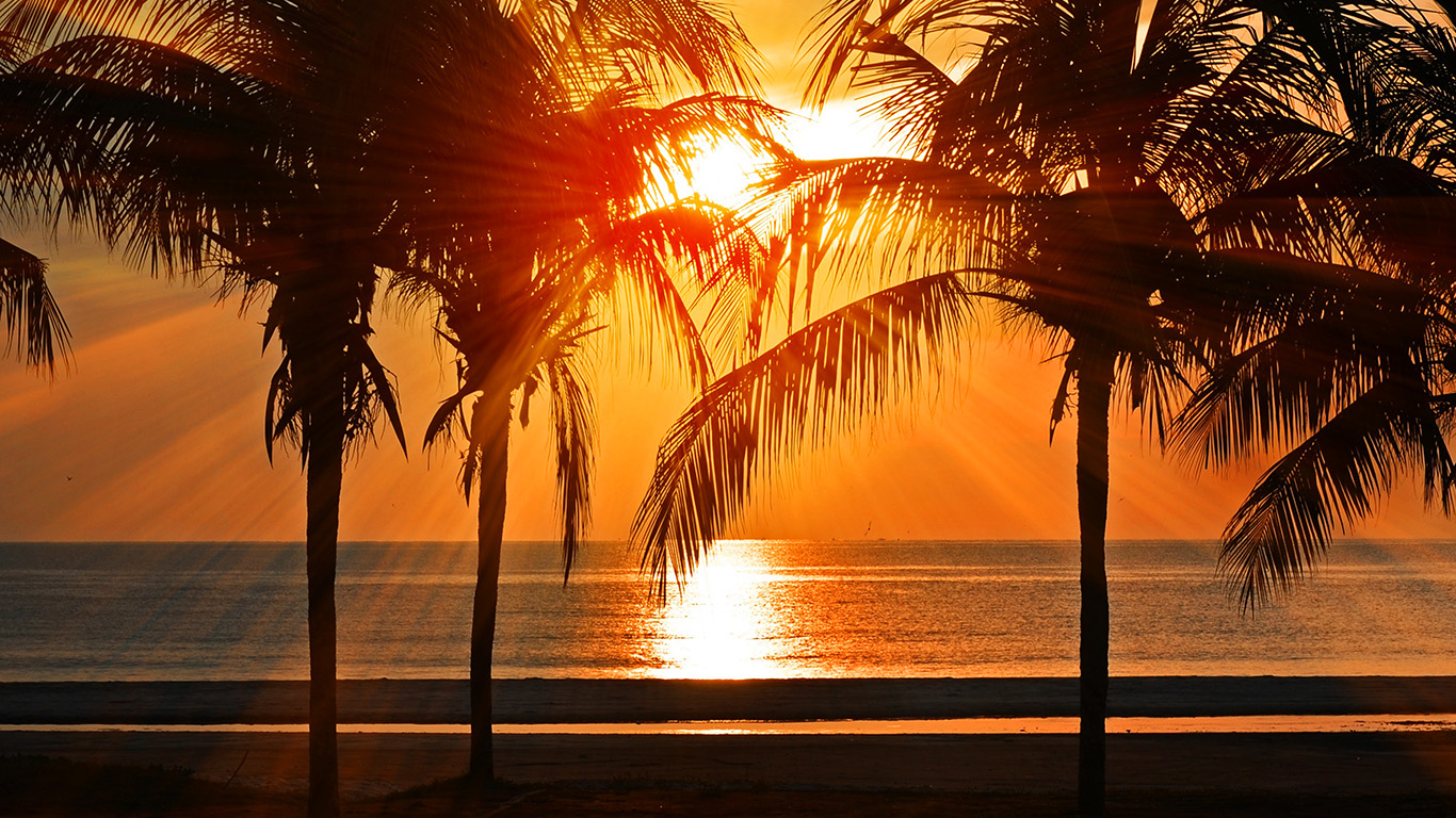 desktop-wallpaper-laptop-mac-macbook-air-nl74-beach-vacation-summer-night-sunset-red-palm-tree-wallpaper