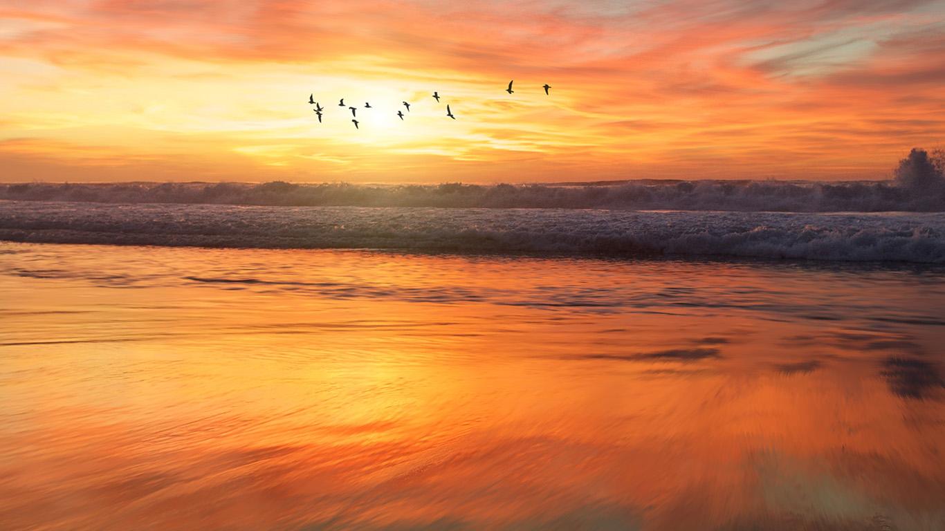 desktop-wallpaper-laptop-mac-macbook-air-nm03-sunset-sea-nature-orange-summer-sky-bird-wallpaper
