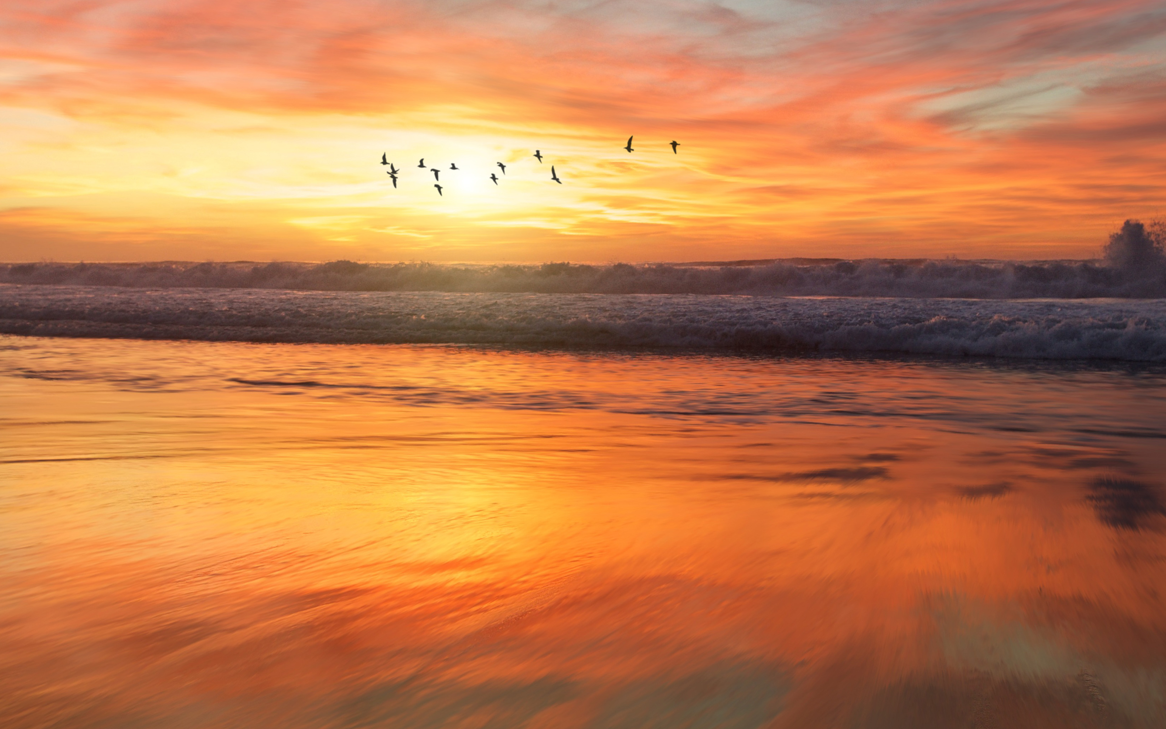 nm03-sunset-sea-nature-orange-summer-sky-bird-wallpaper